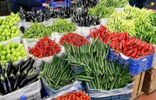 Soğuk Zincir Destek Programı ile sebze meyvede zayiat...