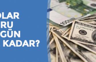 14 Kasım Dolar - Euro Fiyatları