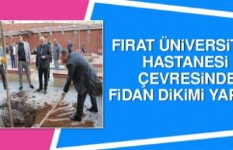Fırat Üniversitesi Hastanesi Çevresinde Fidan Dikimi Yapıldı