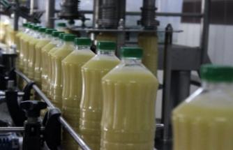 Meyveli boza üreten Bursalı firma, ABD'ye bile satış yapıyor