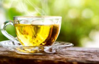 Prof. Dr. Erdem Yeşilada: Antibiyotik kullanırken yeşil çay için