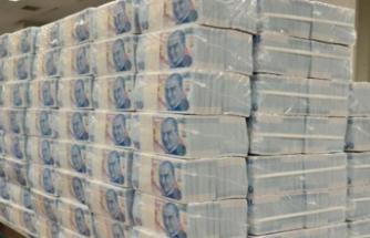 Merkez Bankası, Firmalara Yatırım Taahhütlü 20 Milyar Liralık Avans Kredisi Verecek