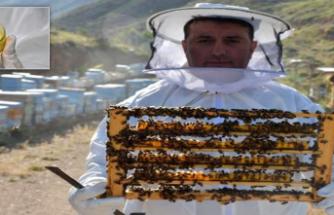 Bağışıklık sistemini güçlendiren arı sütünün kilosu 7 bin TL'den alıcı buluyor