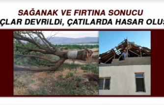 Sağanak ve Fırtına Sonucu Ağaçlar Devrildi, Çatılarda Hasar Oluştu