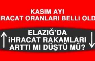 Elazığ'ın Kasım Ayı İhracat Rakamları Belli Oldu!