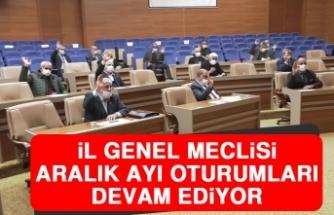 İl Genel Meclisi Aralık Ayı Oturumları Devam Ediyor