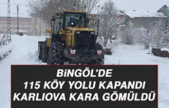 Bingöl'de 115 köy yolu kapandı, Karlıova kara gömüldü