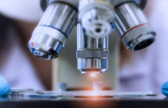ABD'li uzmanlar karaciğerde onarımı sağlayan hücreleri belirledi