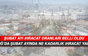 Elazığ'da Şubat ayında ne kadarlık ihracat yapıldı?