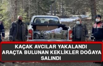 Kaçak Avcılar Yakalandı, Araçta Bulunan Keklikler Doğaya Salındı