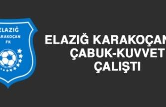 Elazığ Karakoçan FK, Çabuk-Kuvvet Çalıştı