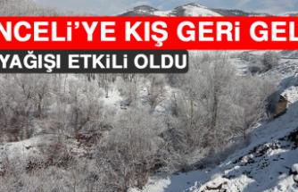 Tunceli'ye Kış Geri Geldi!