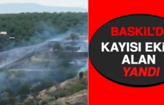 Baskil'de Kayısı Ekili Alan Yandı