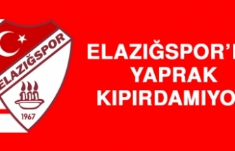 Elazığspor'da Yaprak Kıpırdamıyor