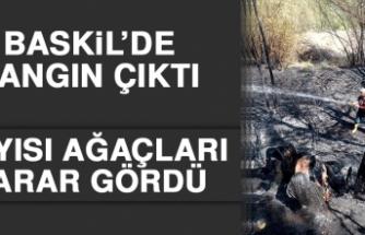 Baskil İlçesinde Çıkan Yangında Kayısı Ağaçları Zarar Gördü