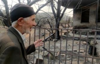 Yangından geriye sadece meyveleri kaldı, onları da orman işçilerine verdi