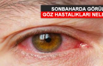 Sonbaharda görülen göz hastalıkları nelerdir?