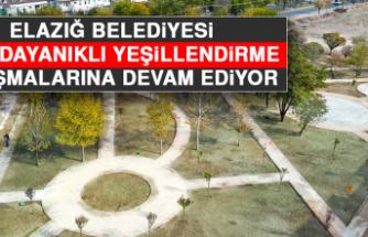 Elazığ Belediyesi Kışa Dayanıklı Yeşillendirme Çalışmalarına Devam Ediyor