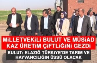 Milletvekili Bulut ve MÜSİAD Kaz Üretim Çiftliğini Gezdi