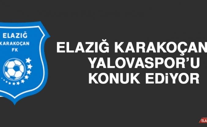 Elazığ Karakoçan FK, Yalovaspor'u Konuk Ediyor