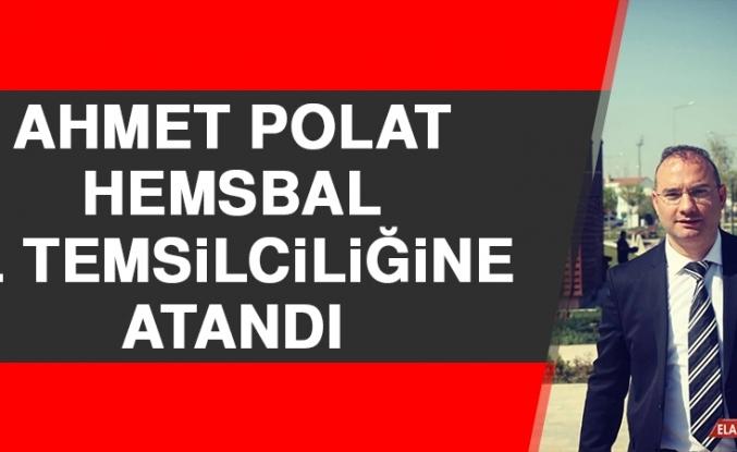 Ahmet Polat, Hemsbal İl Temsilciliğine Atandı