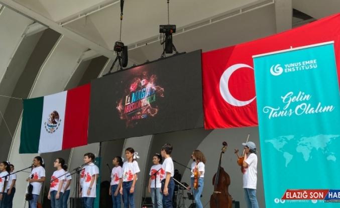 Meksikalı müzikseverler Türkçe konserde bir araya geldi