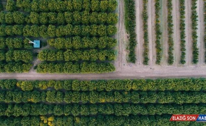 Tarıma 2022 yılı için ayrılan bütçe yüzde 25,5 artırıldı